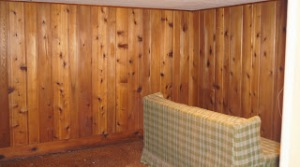 retro basement