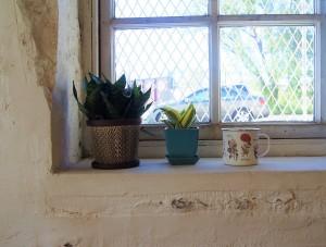 garden studio
